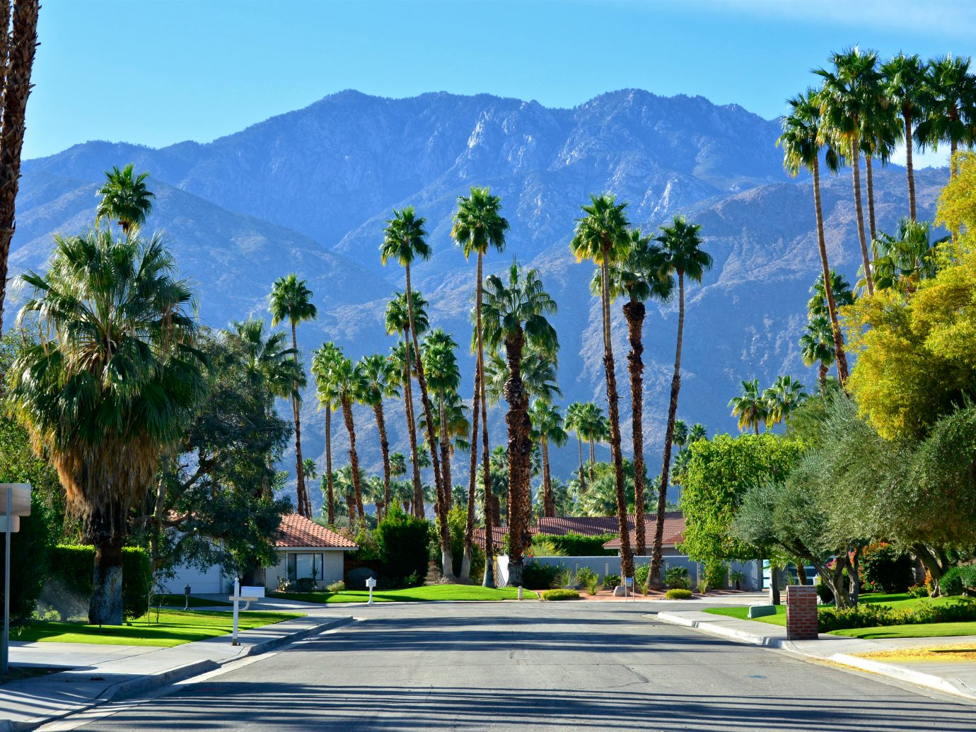 A street scene in Palm Springs, Southern California