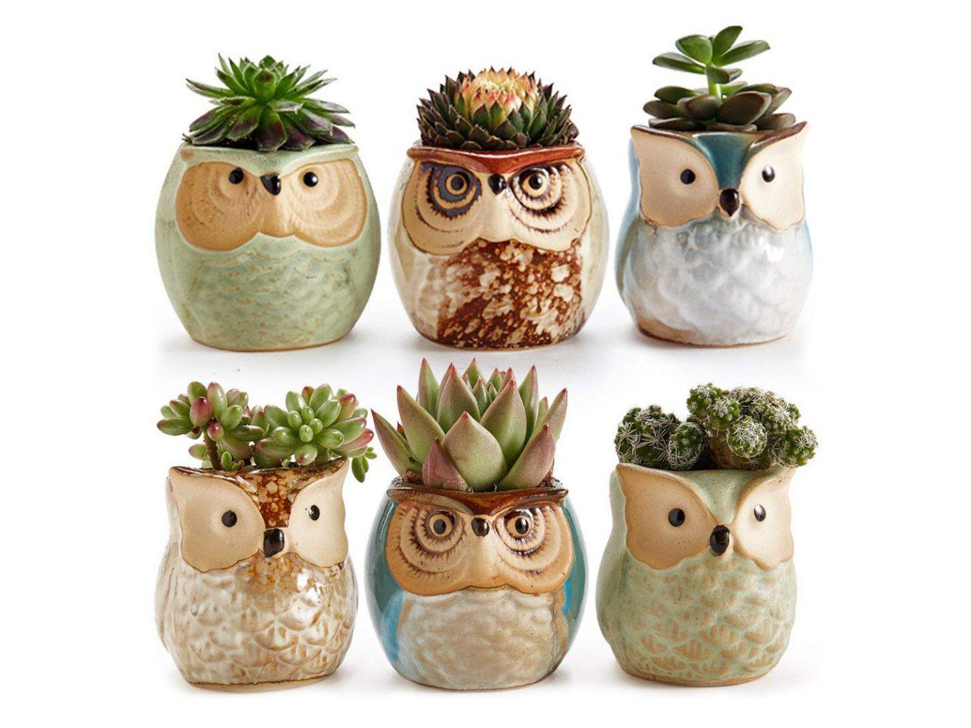 SUN-E 2.5 Inch Owl Pot Ceramic