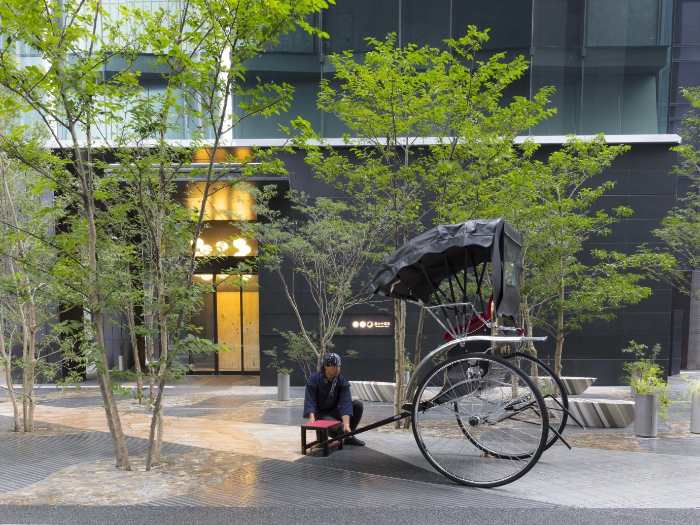 Trip Ideas tree outdoor bicycle vehicle City rolling stock