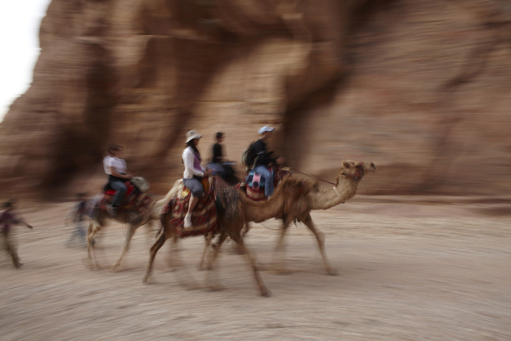 Trip Ideas ground Camel outdoor camel like mammal arabian camel horse like mammal