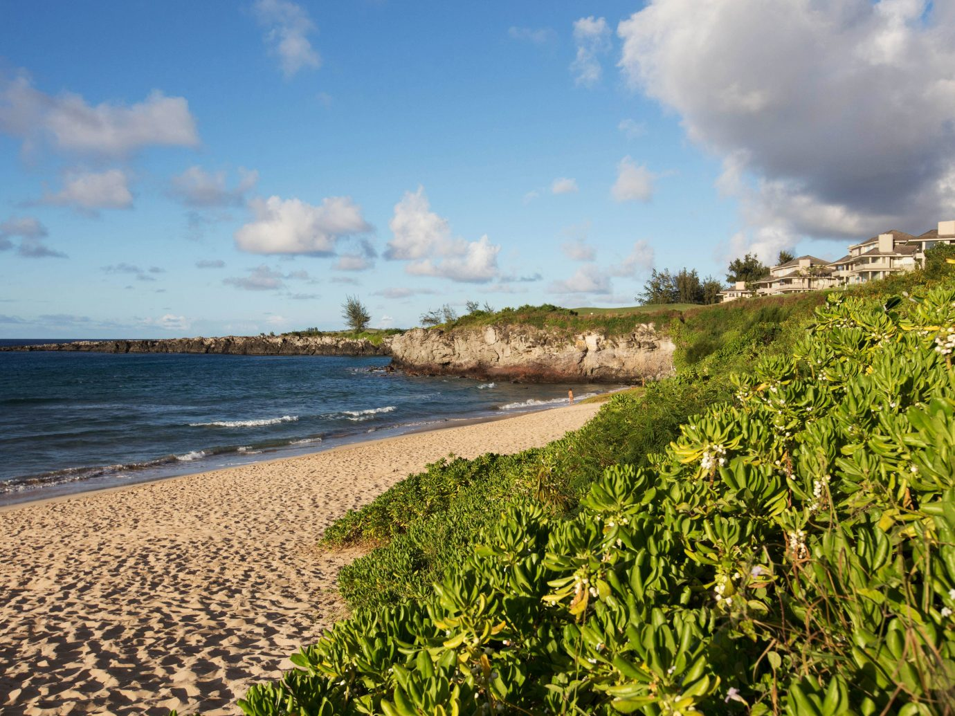 sky outdoor water habitat Nature shore Coast Beach Sea body of water geographical feature Ocean horizon cloud grass vacation morning landscape rural area cliff sunlight bay wave sand terrain cape tropics sandy day