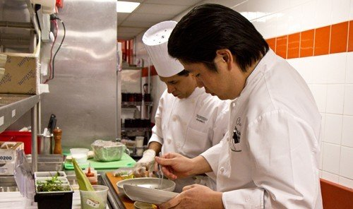 Hotels person food indoor Kitchen preparing cook professional culinary art biology cooking profession chef meal