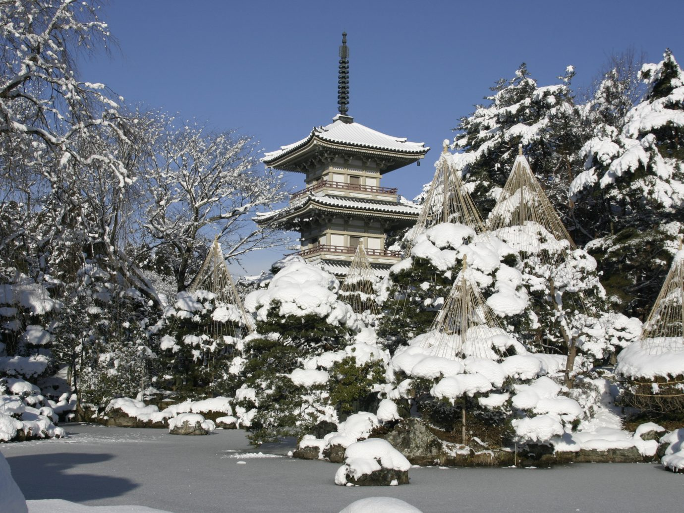 Arts + Culture Festivals + Events Travel Tips outdoor tree sky snow Winter plant freezing tourist attraction place of worship spring cherry blossom branch mountain surrounded