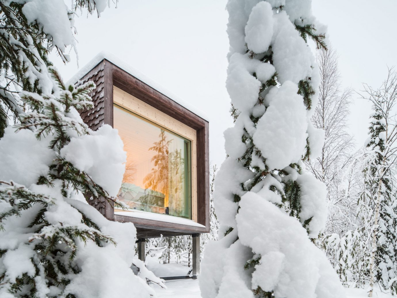 Finland Trip Ideas tree snow outdoor Winter freezing frost Nature branch home fir pine family blizzard ice fresh