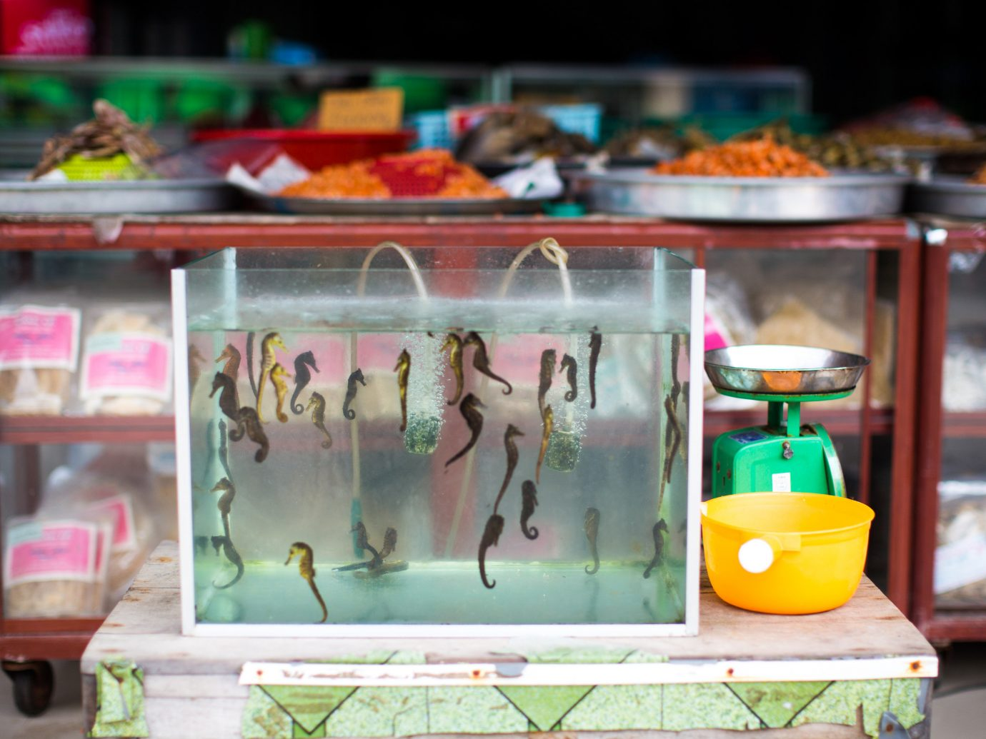 color display window floristry toy retail food