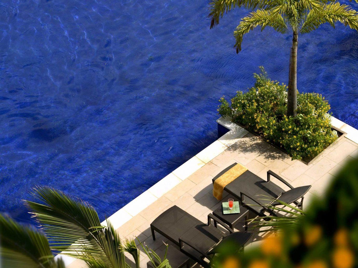 Beach Beachfront Hotels Island Living Romance Wellness tree outdoor grass woody plant arecales plant Coast flower Sea wind
