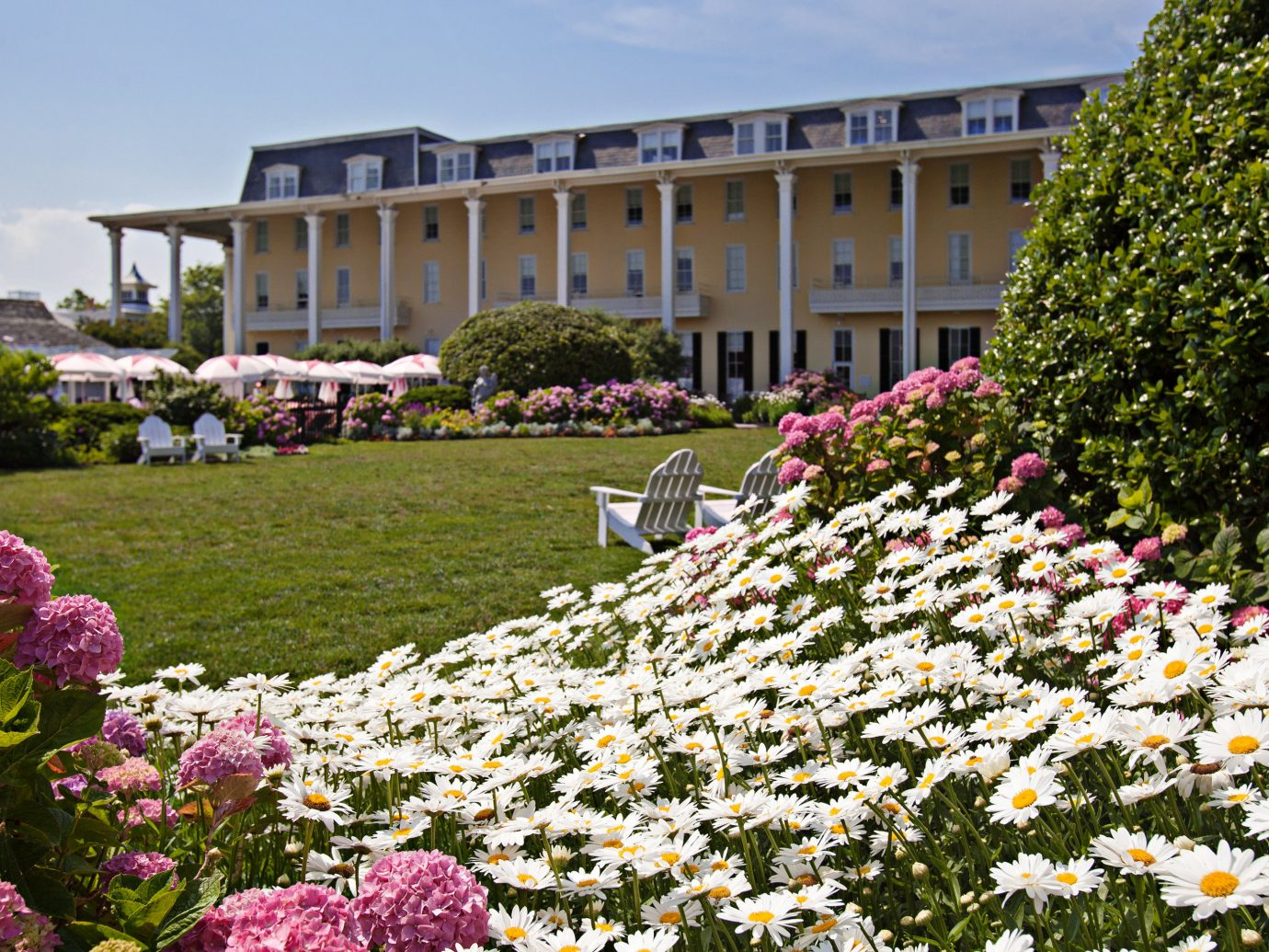 Exterior Garden Grounds Historic Hotels outdoor flower grass flora plant botany floristry estate lawn botanical garden park crowd