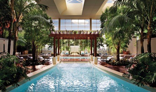 Beach tree Pool Resort building plant swimming pool property condominium estate leisure Villa real estate palm home swimming hacienda mansion eco hotel Courtyard backyard furniture