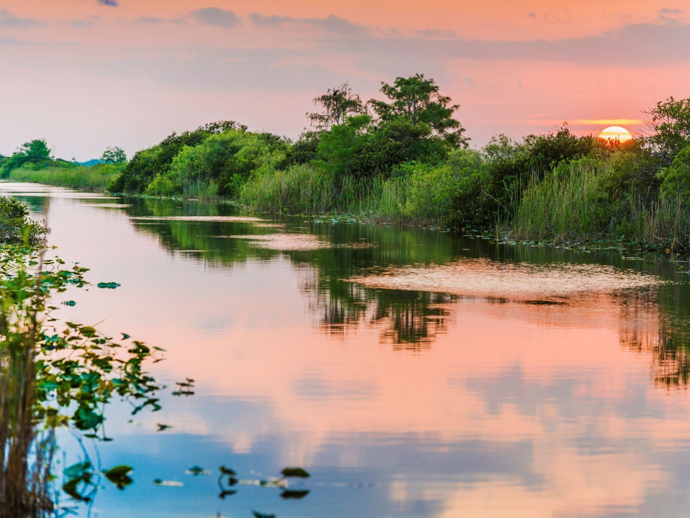 Trip Ideas water outdoor tree Nature sky River habitat reflection Lake atmospheric phenomenon natural environment wilderness body of water shore morning wetland marsh cloud surrounded loch pond landscape dawn rural area reservoir Sunset evening dusk sunrise swamp Sea several