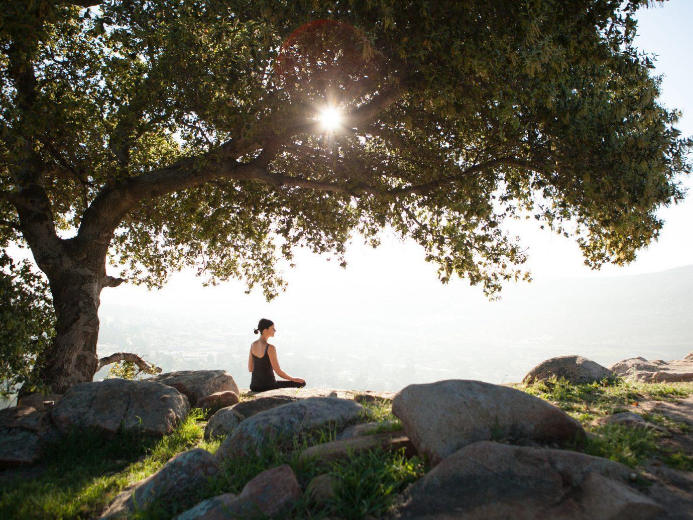 Health + Wellness Hotels Spa Retreats tree outdoor rock Nature man woody plant sunlight water feature autumn plant hillside