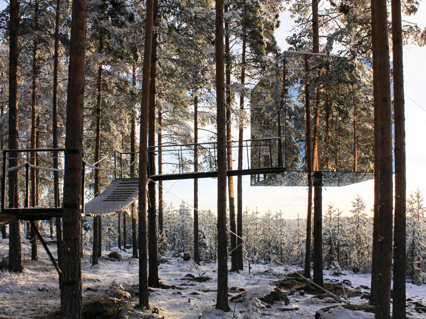 Hotels tree outdoor habitat snow Winter Nature wilderness natural environment weather woodland season Forest woody plant wood sunlight autumn conifer area wooded day surrounded
