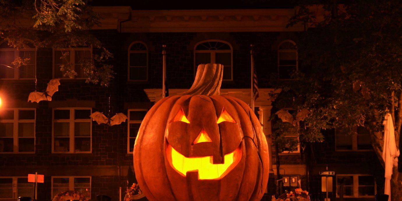 art festival festive fun glow halloween holiday lights night night lights parade pumpkins sculpture Trip Ideas outdoor lamp light darkness lighting jack o lantern pumpkin evening