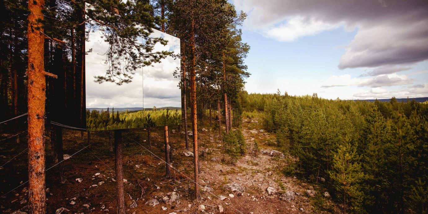 Boutique Hotels Sweden sky Nature cloud wilderness tree leaf sunlight landscape meteorological phenomenon Winter Forest autumn hill grass