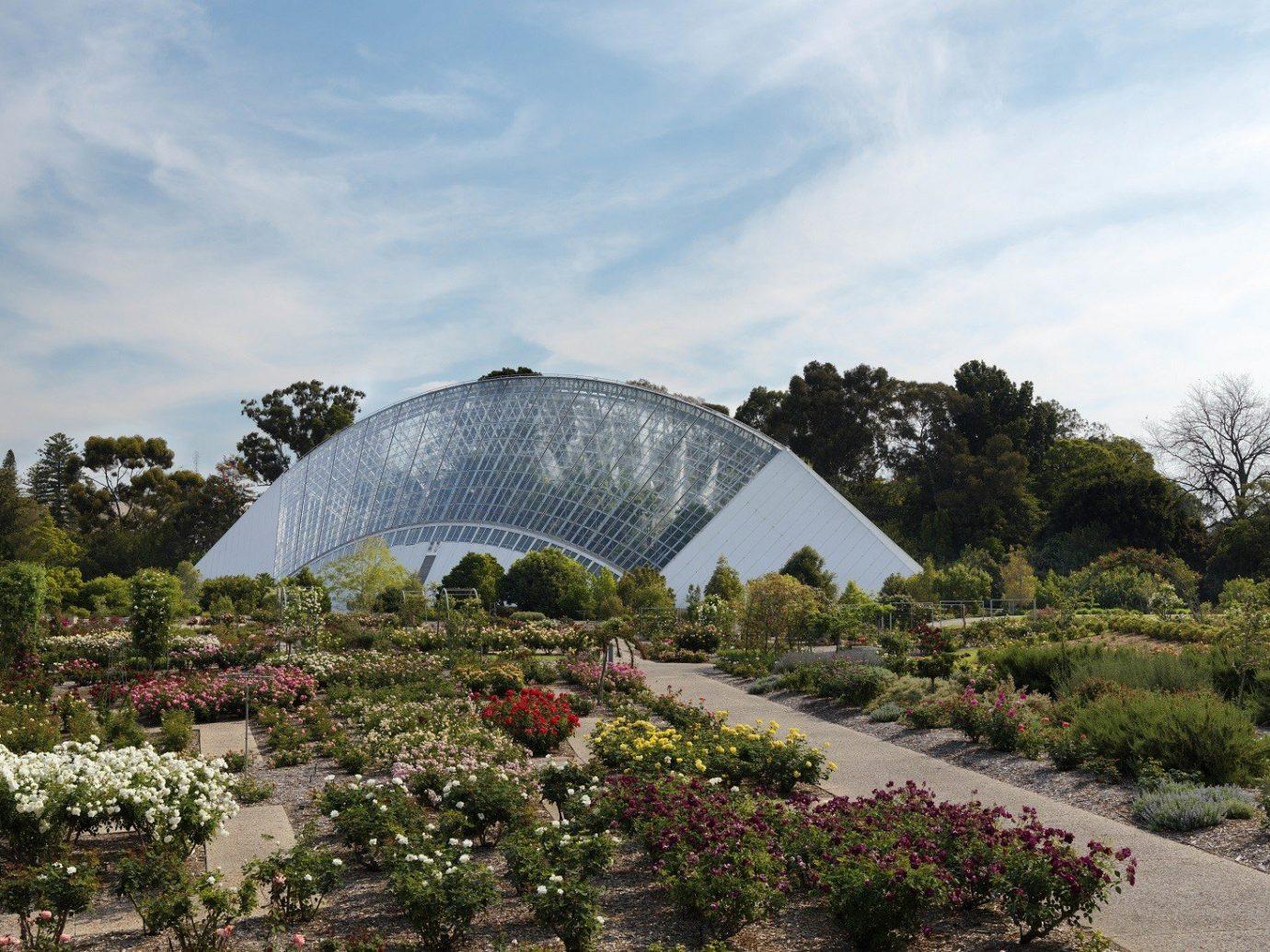 Trip Ideas outdoor sky botany Garden flower botanical garden greenhouse