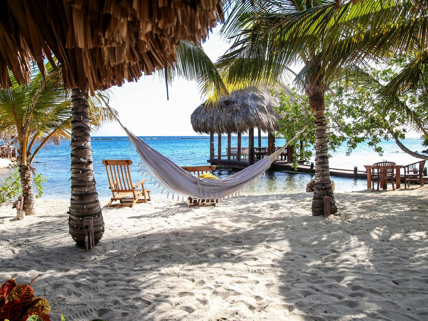 Hotels outdoor tree ground Beach plant Resort vacation arecales estate tropics sandy palm shade shore