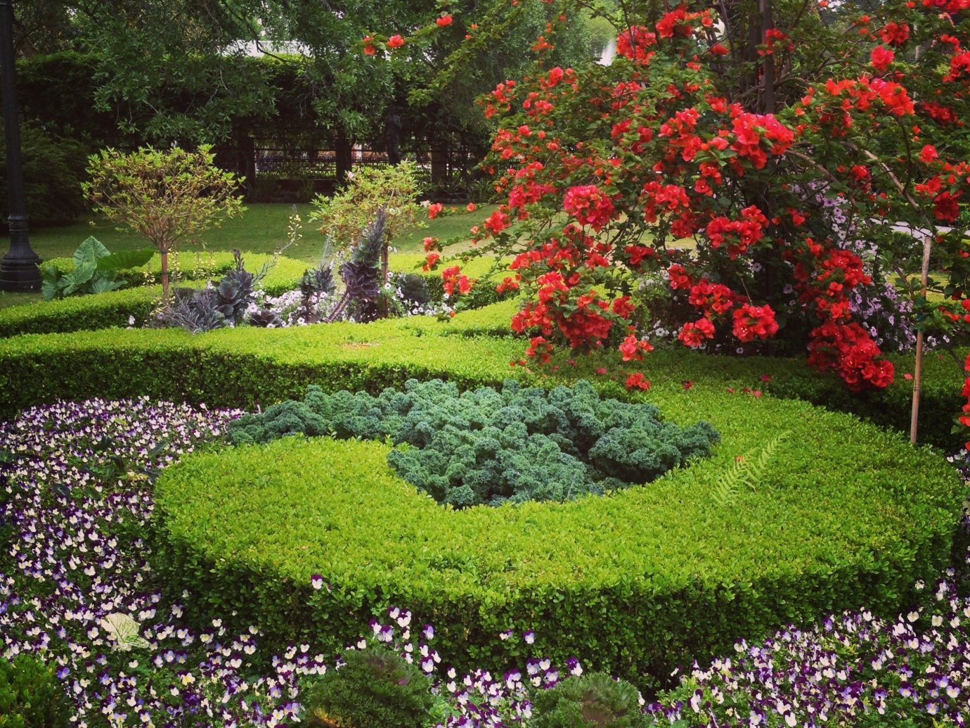 Hotels grass tree flower outdoor Garden plant flora botany lawn green land plant shrub yard woodland botanical garden flowering plant bushes annual plant meadow blossom grassy surrounded stone colorful lush colored