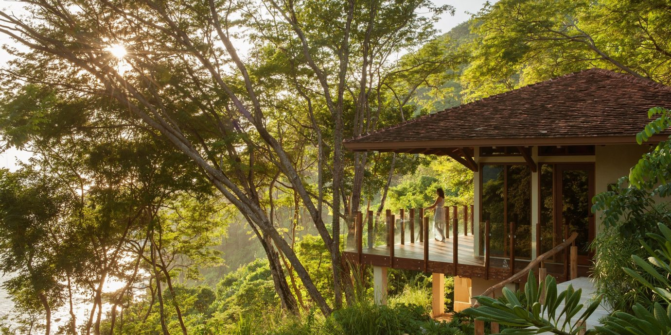 Trip Ideas tree outdoor building property house botany estate home Garden cottage flower outdoor structure woodland backyard Jungle plant bushes surrounded