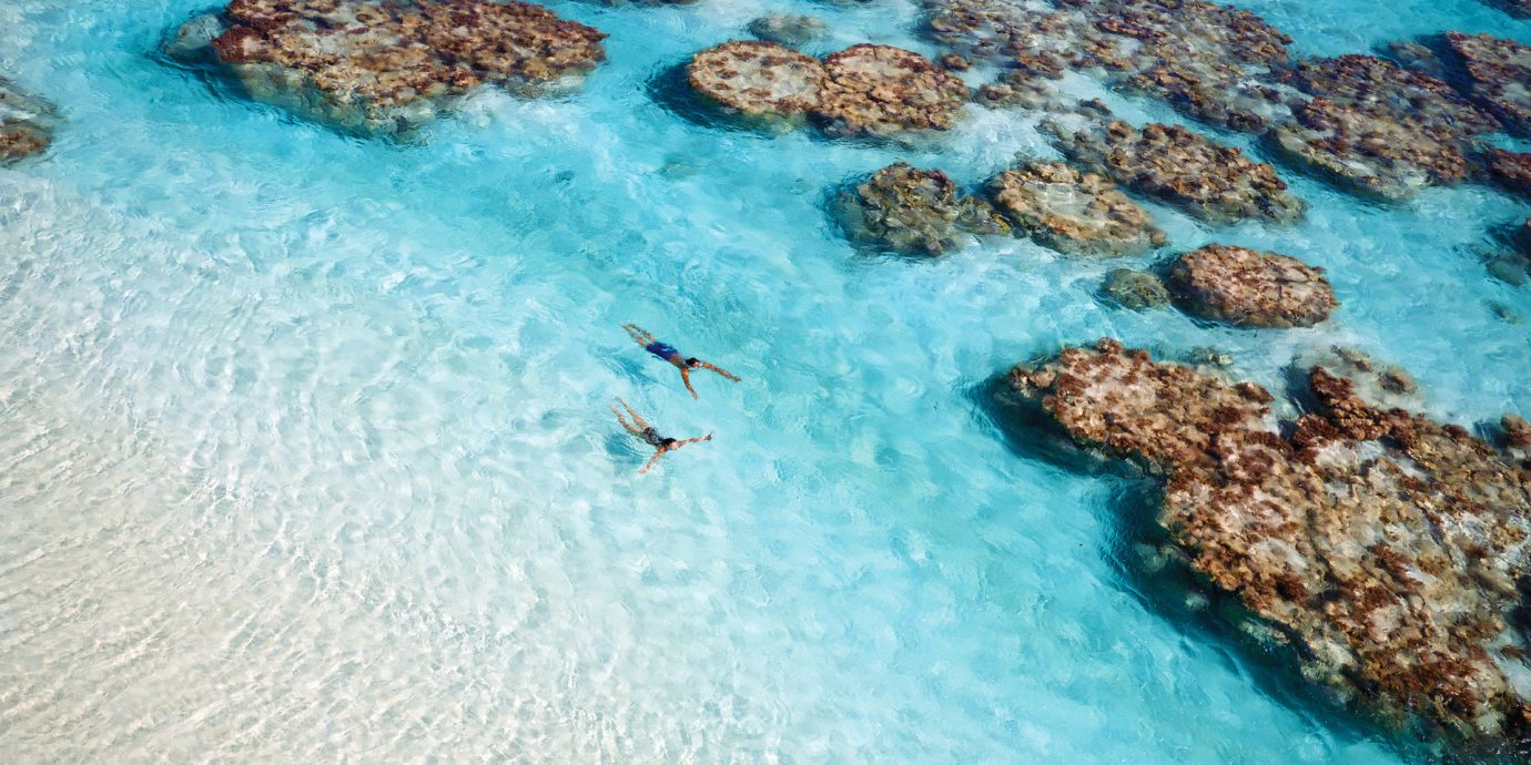 Beach clear water coral coral reef isolation Ocean Offbeat people remote Rocks serene swimmers swimming Tropical turquoise Water activities white sands water Nature marine biology Sea reef biology Pool underwater Coast sand tide pool shore