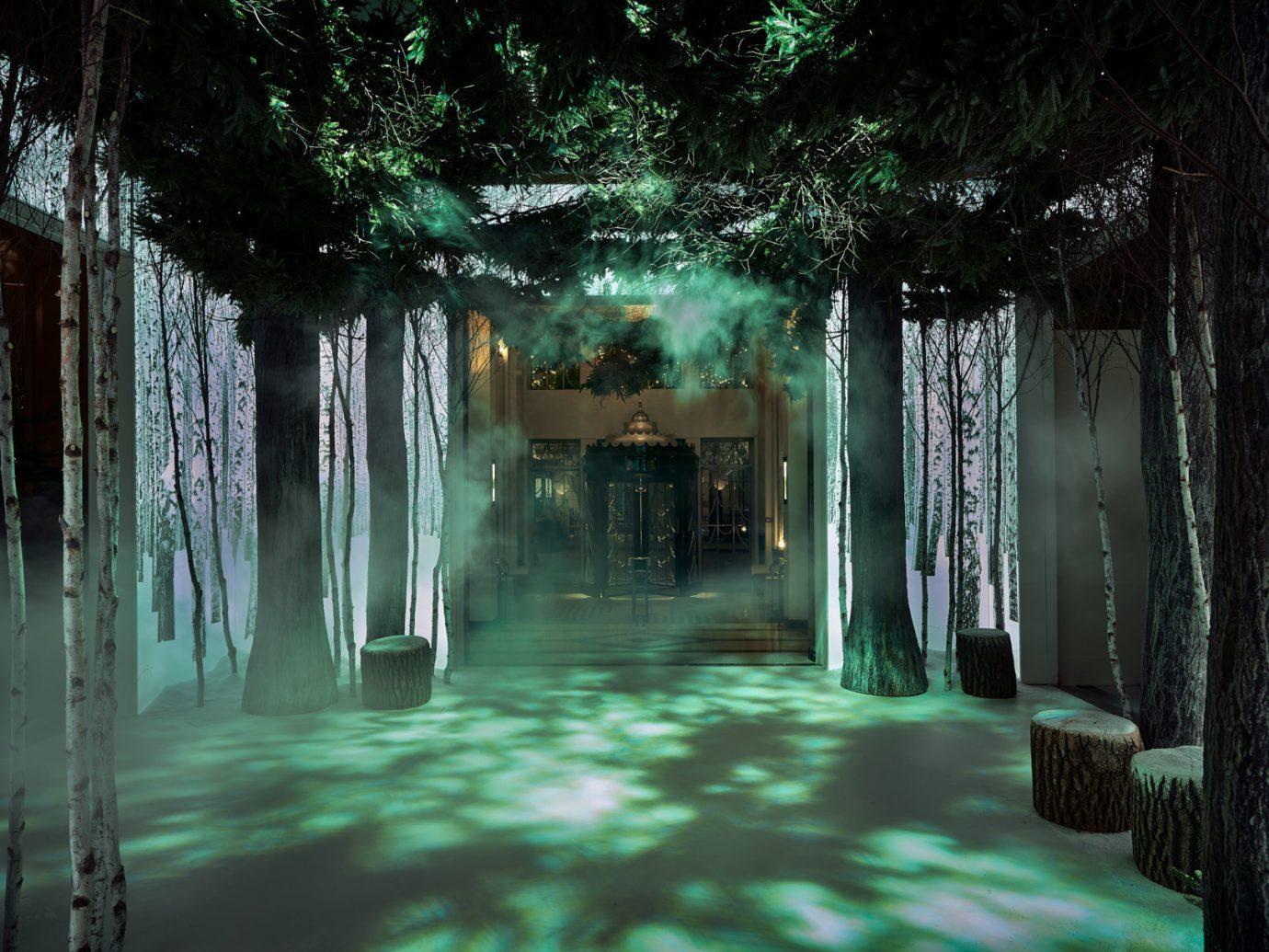 Hotels tree night light darkness reflection Forest screenshot sunlight ice day