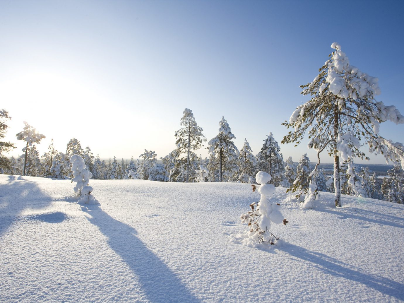 Adventure outdoor snow sky Winter skiing Nature tree weather person slope season freezing footwear woody plant frost piste hill sunlight ski slope day