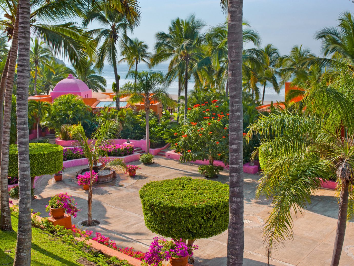 Grounds Hotels Island Romance tree outdoor sky palm Resort flora botany Garden flower plant arecales botanical garden estate palm family Courtyard yard lined