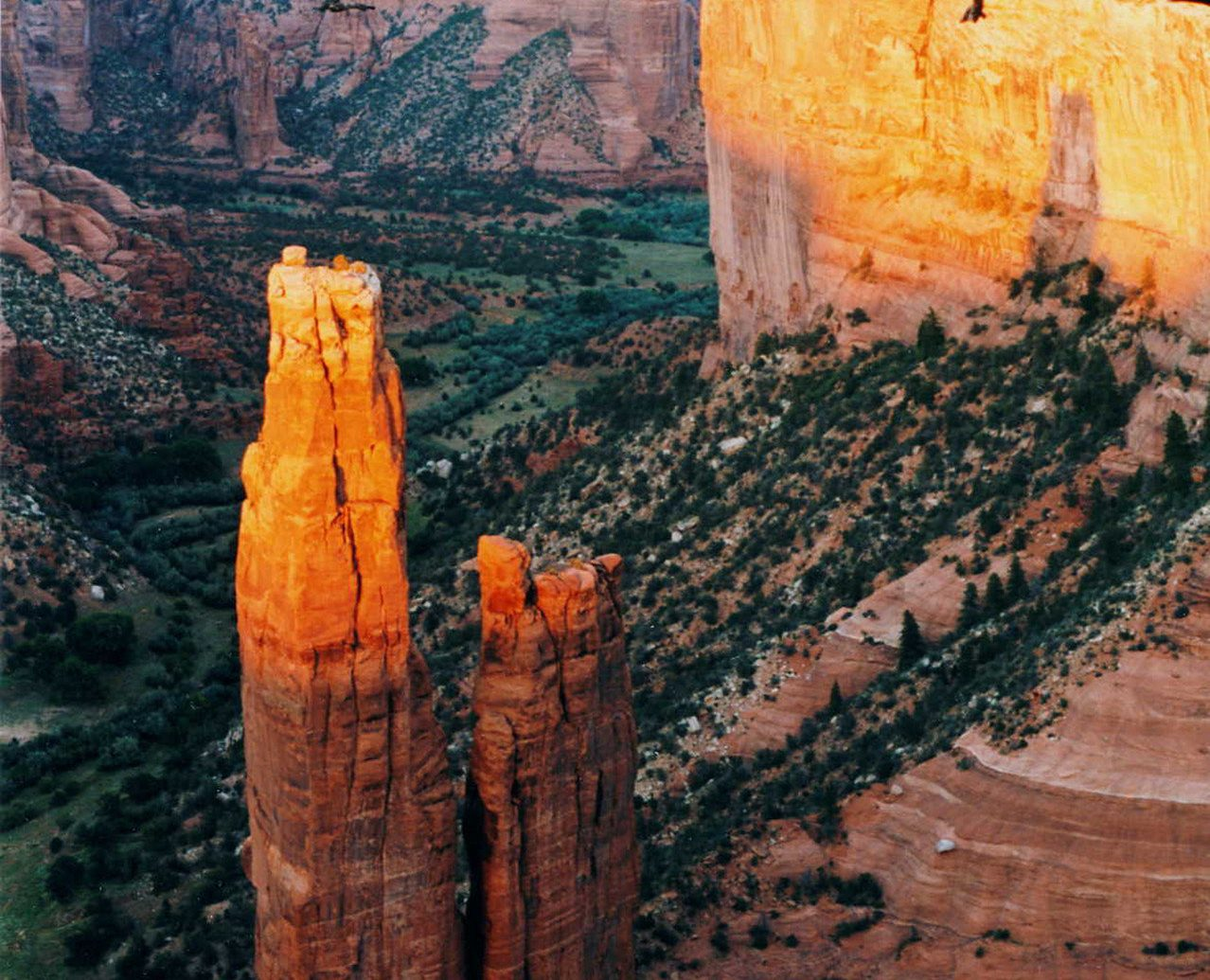 canyon Country Desert Monuments Natural wonders Nature Offbeat Scenic views tree outdoor valley rock wall season arch ancient history wood temple carving geology formation snow autumn orange