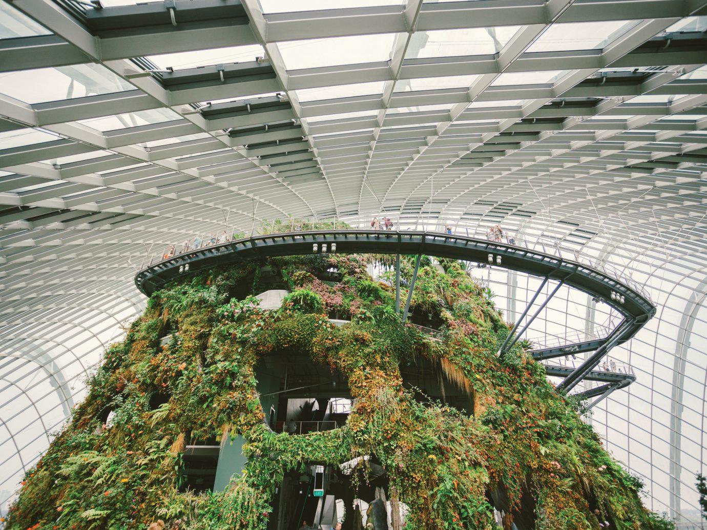 Offbeat Singapore Trip Ideas structure building outdoor sport venue Architecture stadium arena skyway greenhouse court