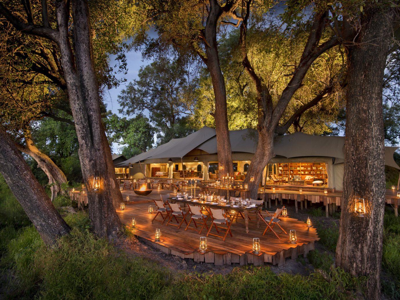 Hotels Trip Ideas tree outdoor grass leaf autumn estate plant landscape lighting park shrine wooded