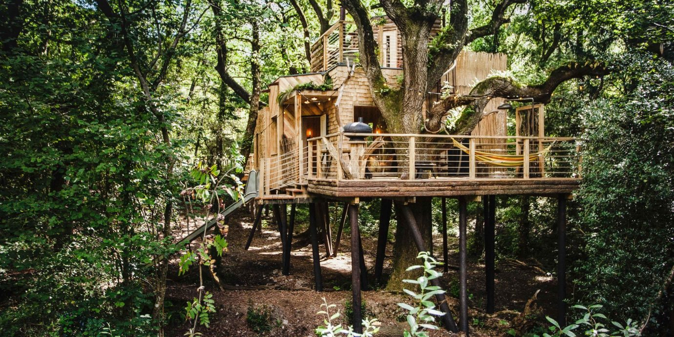 Glamping Hotels Outdoors + Adventure Trip Ideas tree outdoor tree house nature reserve plant outdoor structure wooden woodland house wood cottage Forest old growth forest log cabin real estate Jungle landscape wooded area surrounded