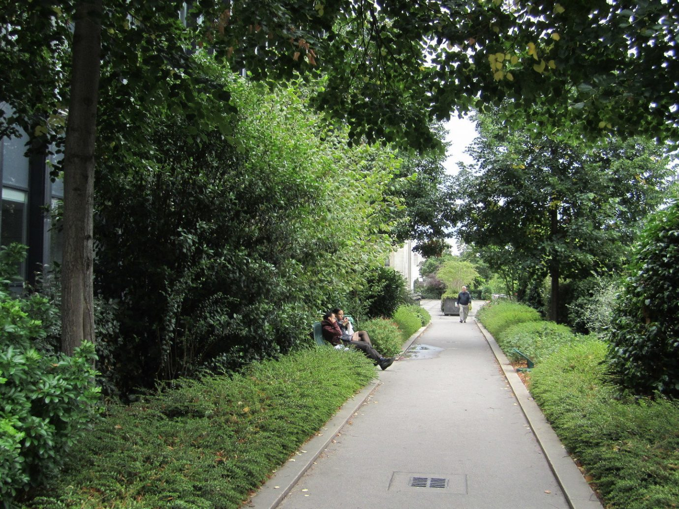city park Garden Greenery isolation Nature park path people remote trees Trip Ideas tree grass outdoor transport waterway rolling stock way Canal walkway trail