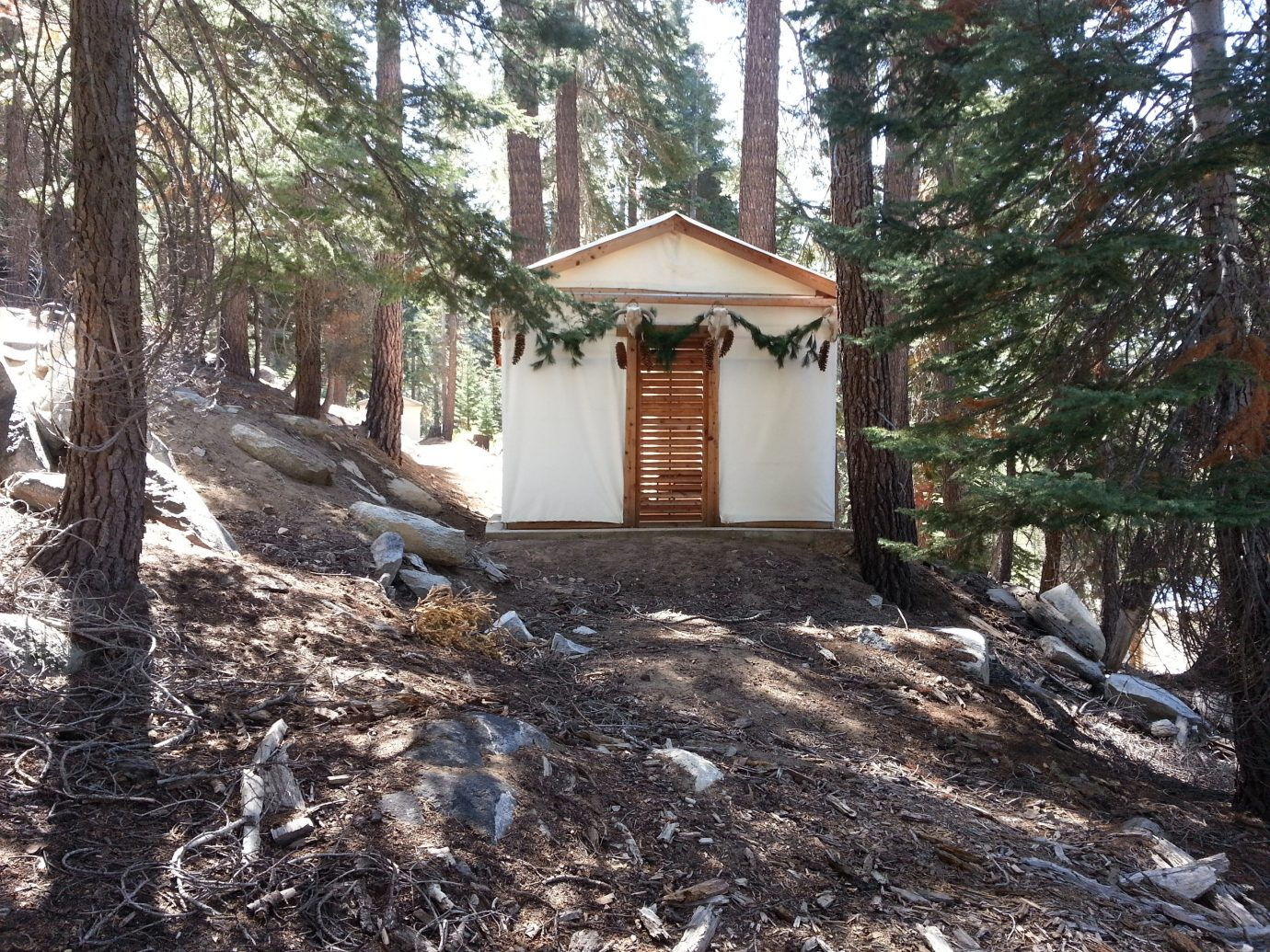 Glamping Outdoors + Adventure Trip Ideas tree outdoor ground house home building cottage shack estate log cabin wood yard backyard hut Forest trail wooded area plant surrounded