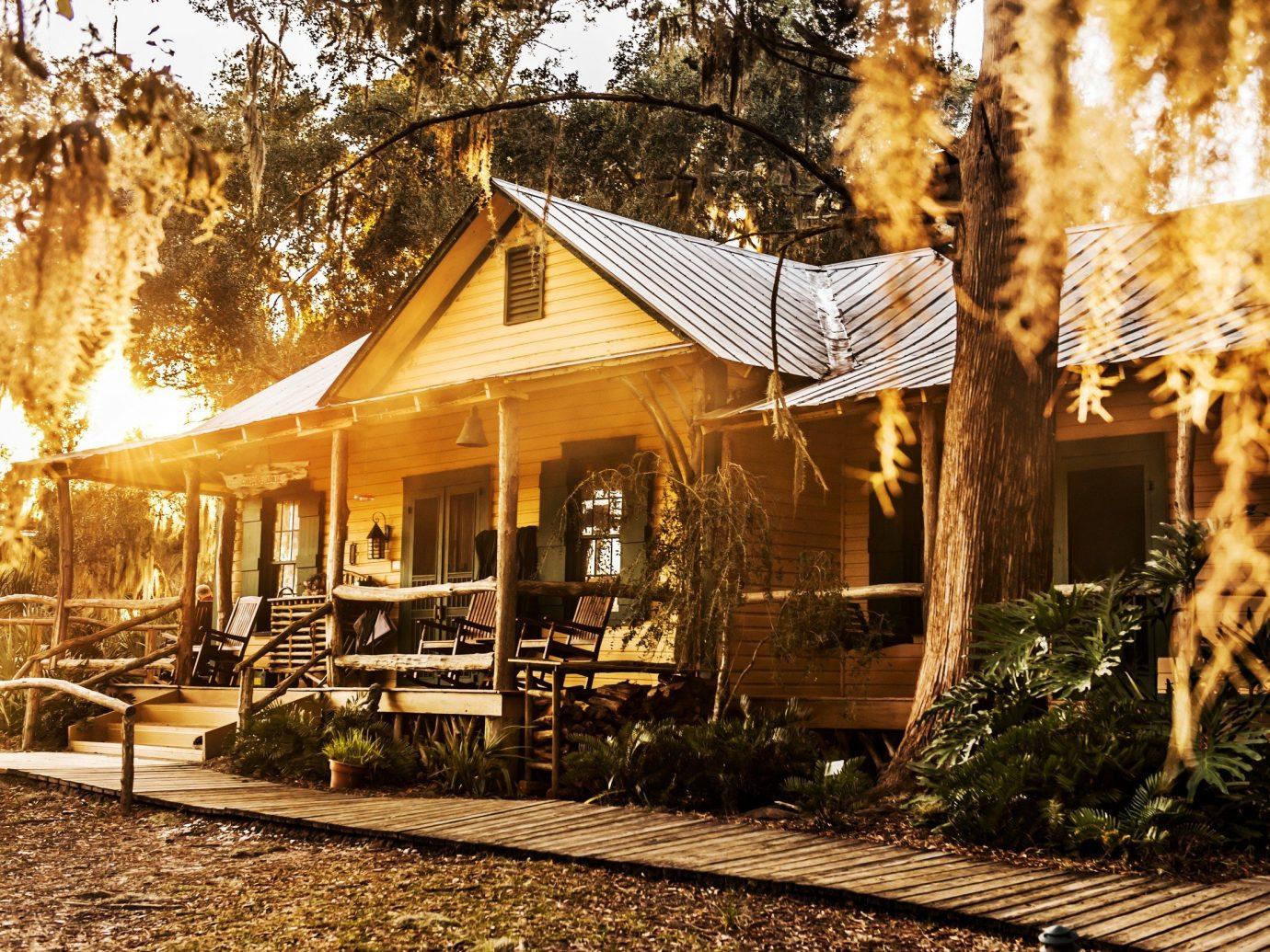 Hotels tree outdoor house home log cabin hut Resort