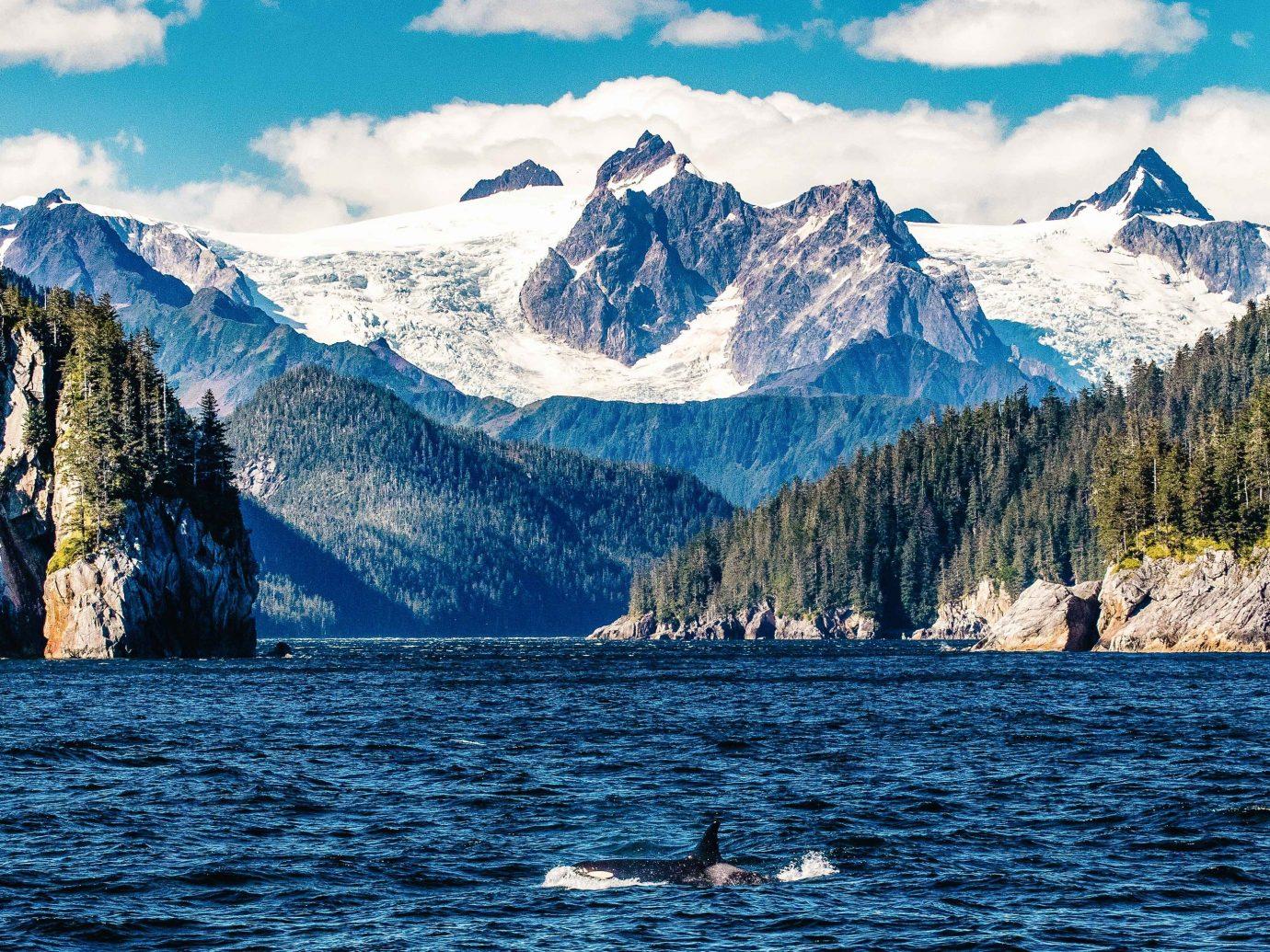 Kenai Fjords, Alaska Mountain Range