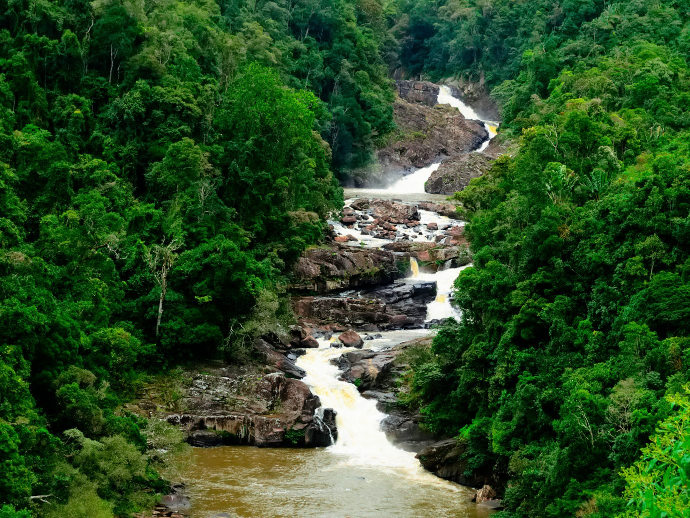Trip Ideas tree outdoor water habitat River Nature nature reserve vegetation Waterfall body of water watercourse natural environment stream rainforest geological phenomenon Forest water feature rapid Jungle valley ravine surrounded bushes hillside traveling lush wooded