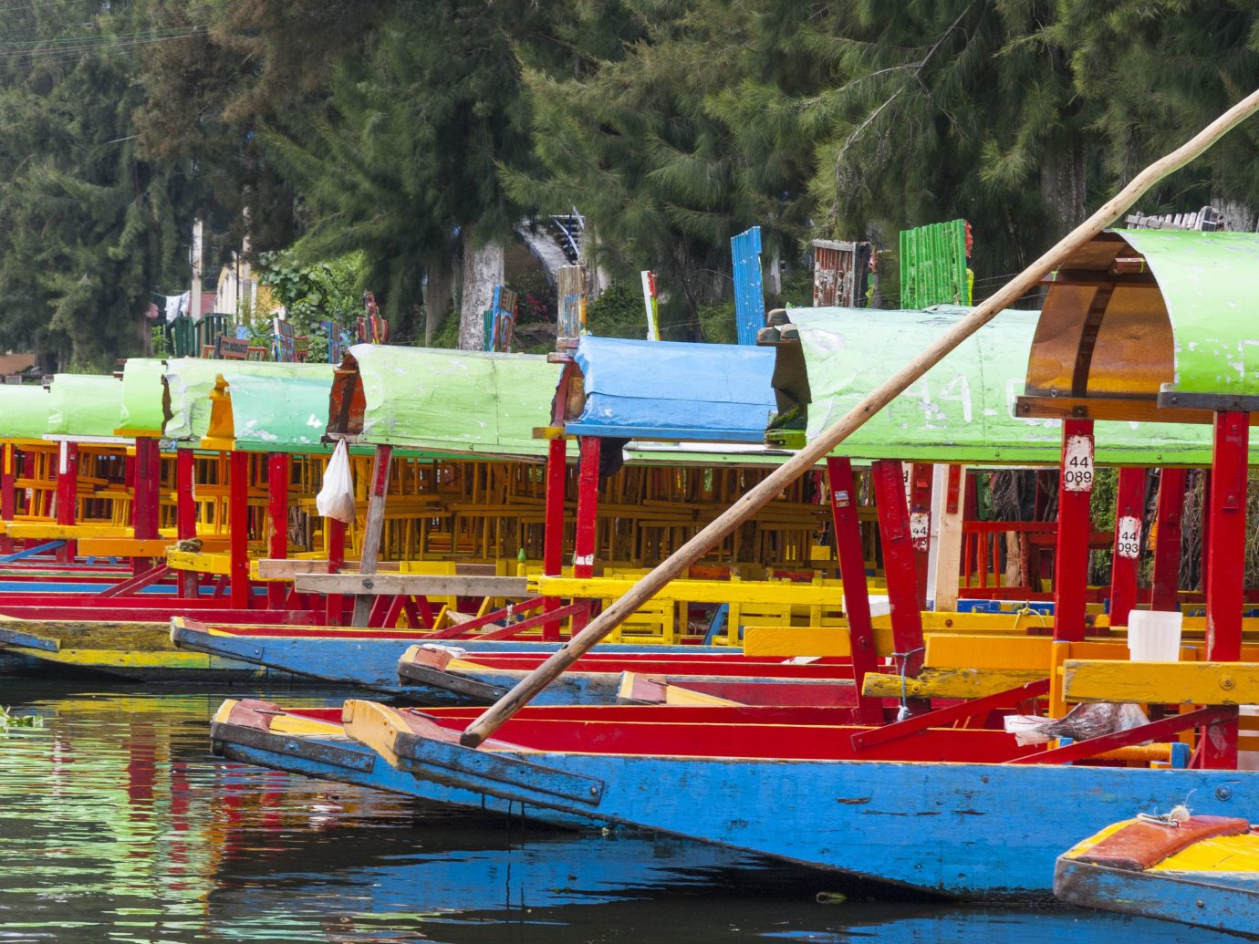 Arts + Culture Mexico City Travel Tips Trip Ideas waterway water water transportation leisure Boat boating Rowing watercraft rowing recreation amusement park plant tree tourism Canal fun