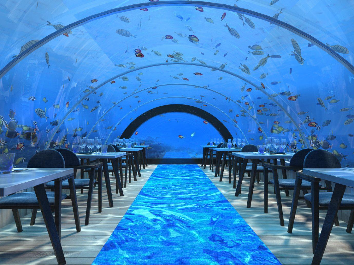 Hotels blue Pool restaurant