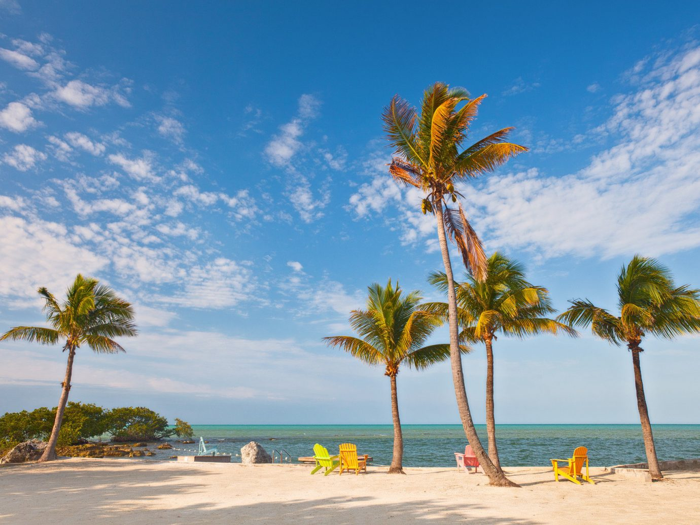 Trip Ideas sky tree outdoor water Beach palm shore body of water Sea Ocean caribbean vacation Coast palm family plant tropics arecales woody plant bay sand cape Island lined sandy