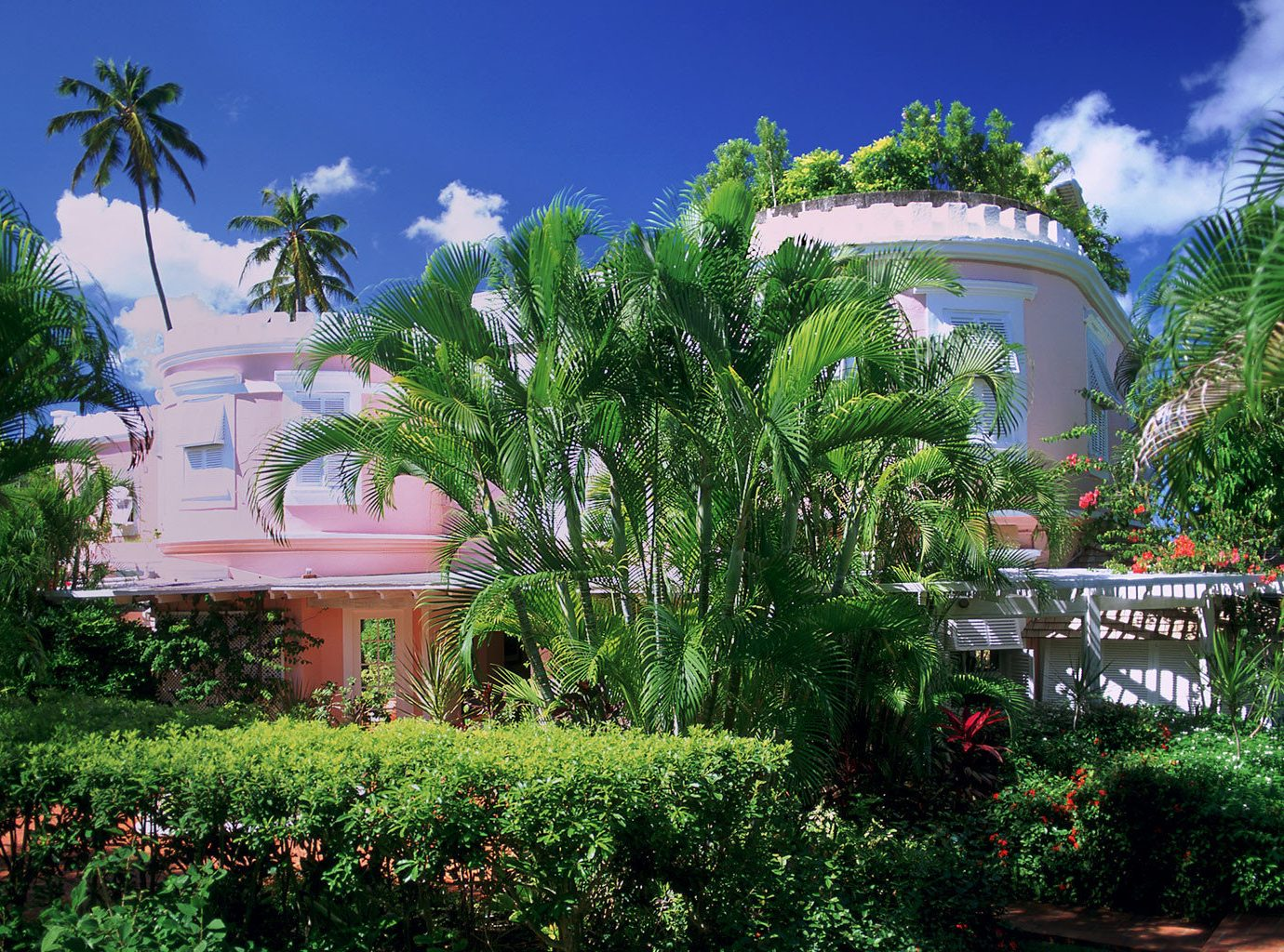 Beach Beachfront Country Elegant Exterior Garden Grounds Island Trip Ideas Waterfront tree outdoor plant Resort botany house estate bushes flower vacation arecales tropics mansion home Jungle botanical garden Villa palm surrounded