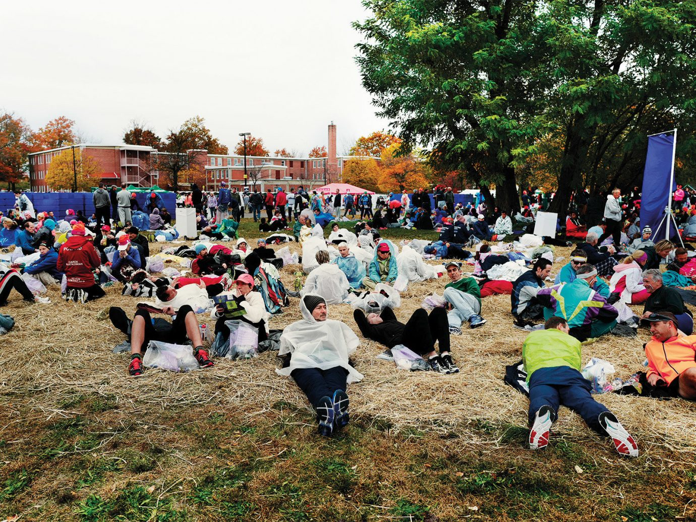 Arts + Culture tree outdoor grass people crowd group community endurance gathered several Playground