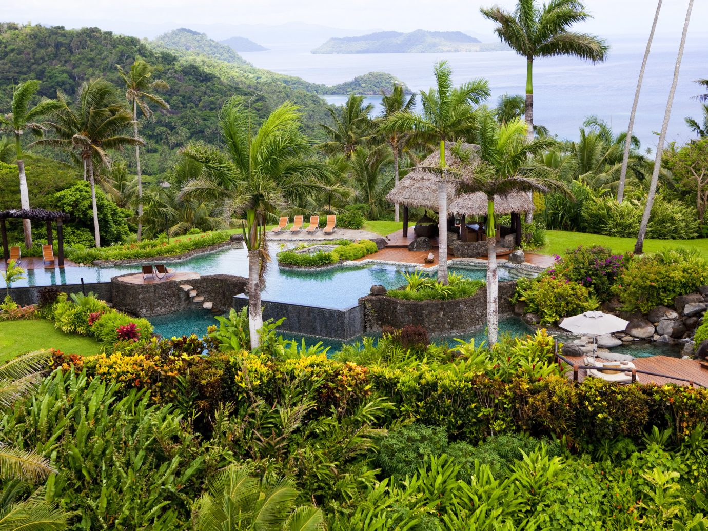 All-Inclusive Resorts Hotels Luxury Travel tree outdoor grass sky Resort botany estate Garden Nature arecales botanical garden swimming pool Jungle plant backyard tropics lush bushes surrounded