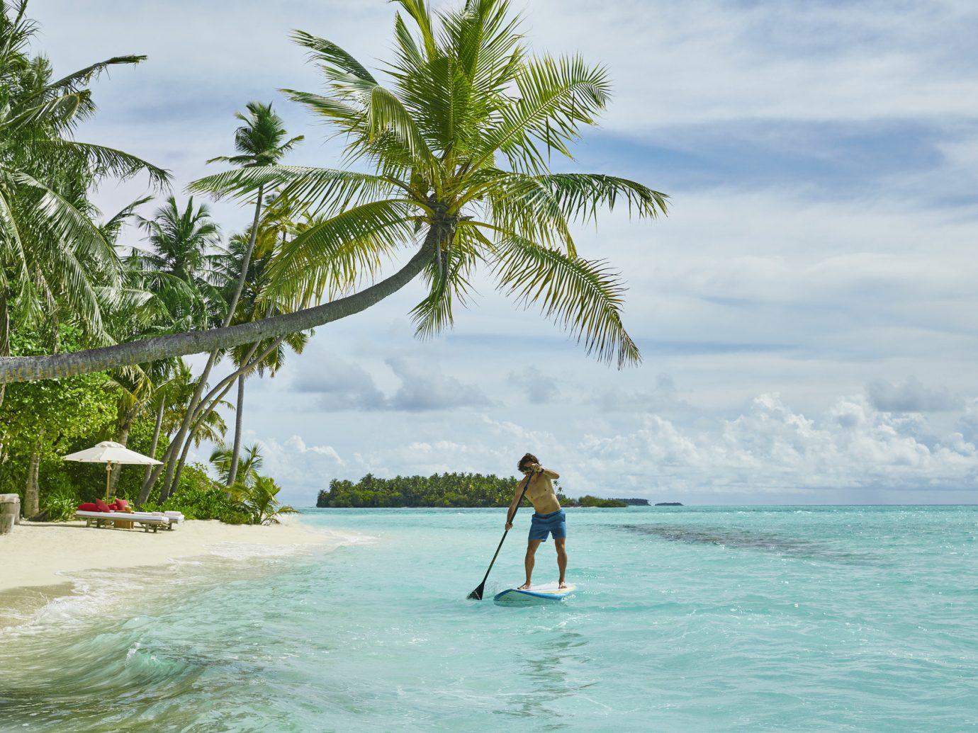 Budget water tree outdoor sky Beach body of water vacation Sea caribbean Ocean arecales tropics Coast Lagoon Island bay wave palm plant shore
