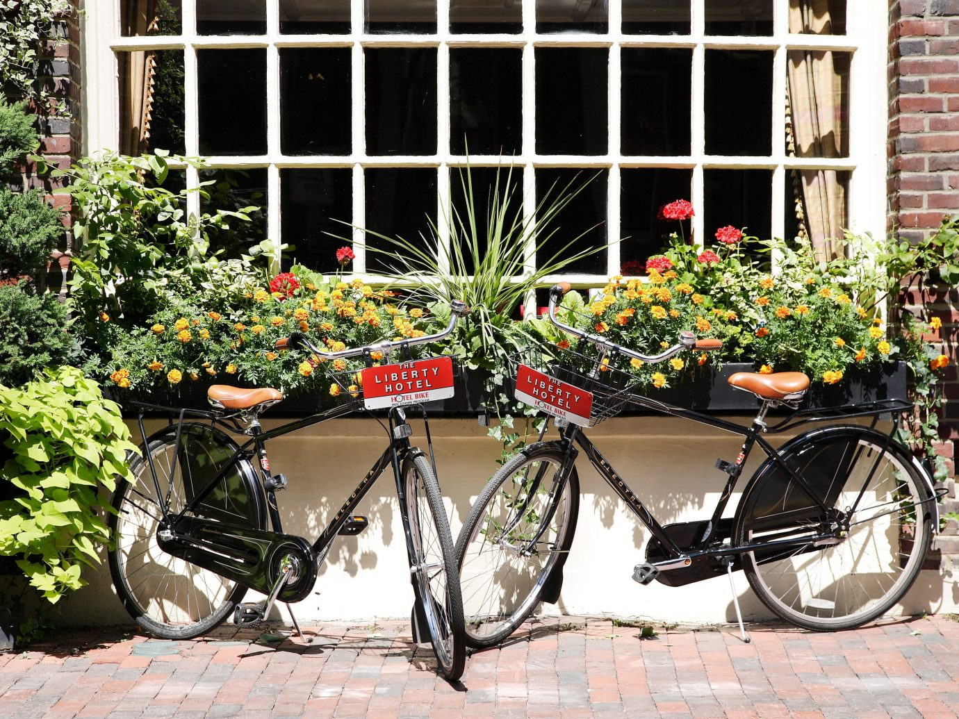 Exterior Hotels outdoor building bicycle parked brick sidewalk vehicle flower sports equipment stone curb scooter
