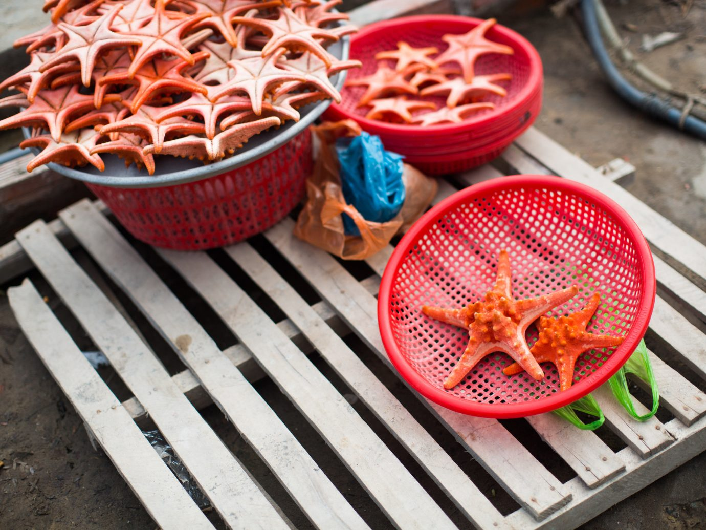 ground red food dish wooden wheel meat baking snack food produce meal dessert flavor vegetable