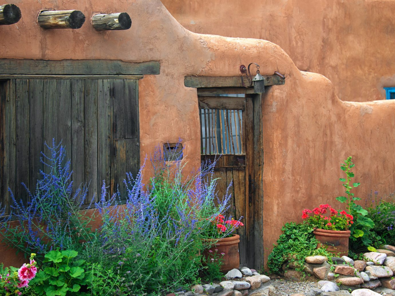 Offbeat building outdoor flower plant wall house yard backyard Garden home pot window stone surrounded