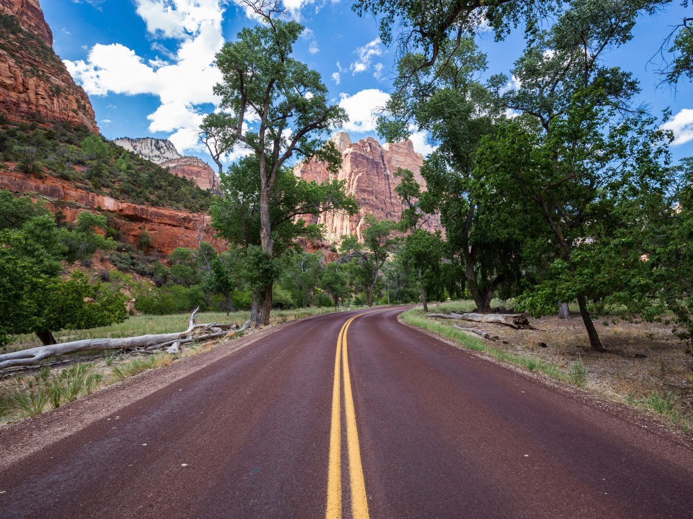 National Parks Outdoors + Adventure Trip Ideas tree outdoor road sky way scene plant mountain woody plant rural area infrastructure flower landscape autumn road trip Village empty lined