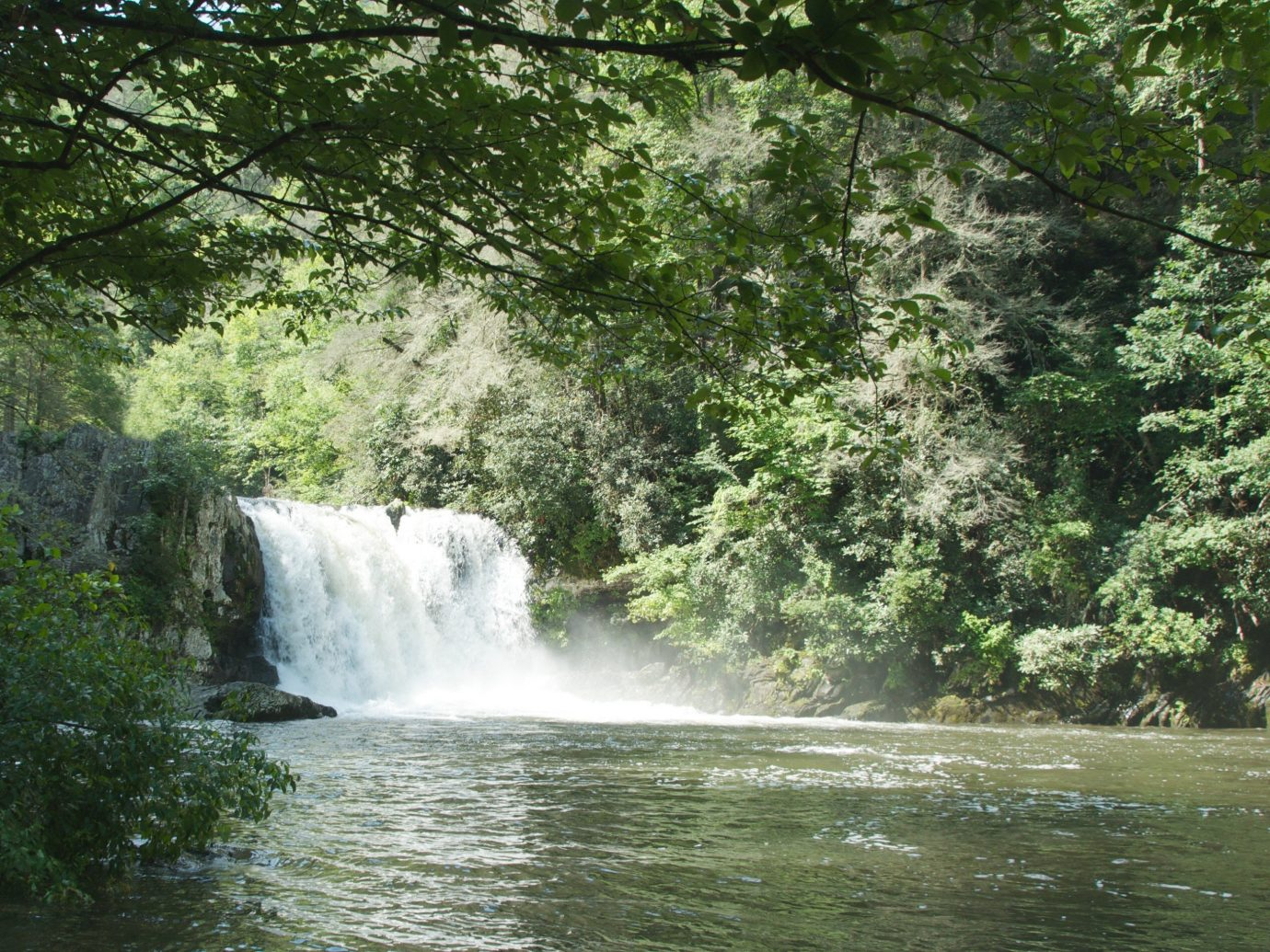 Family Travel National Parks Trip Ideas tree outdoor water Nature body of water Waterfall River watercourse water feature stream Forest rapid Jungle rainforest