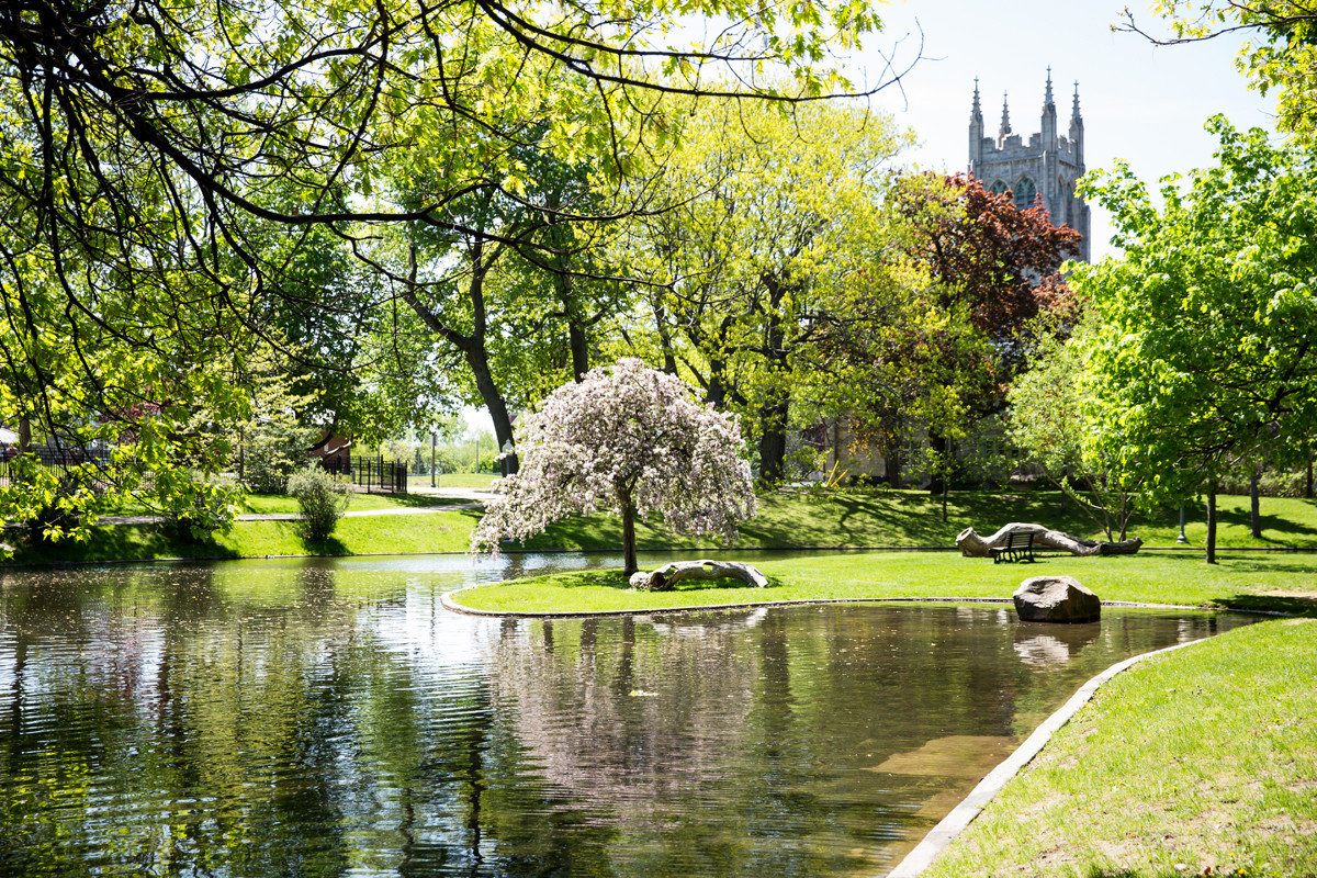 Trip Ideas tree grass outdoor reflection water Nature leaf green waterway Garden plant pond woody plant vegetation flora botanical garden park bank spring estate landscape lawn watercourse reflecting pool sky branch lacustrine plain Lake shrub landscaping autumn Canal bayou surrounded
