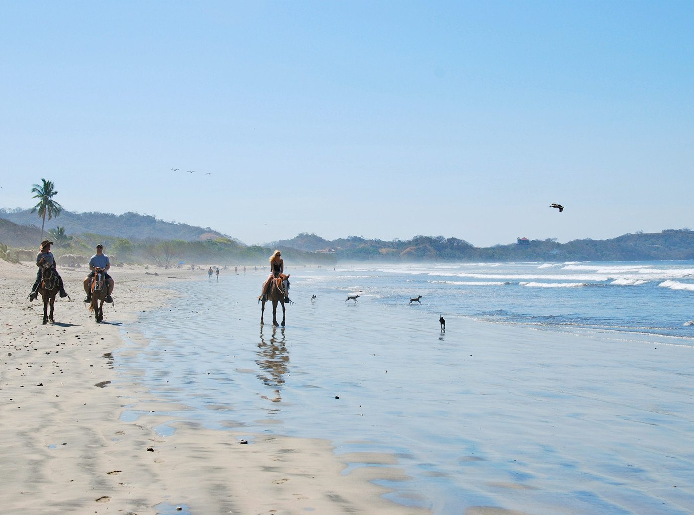People riding horses in Costa Rica