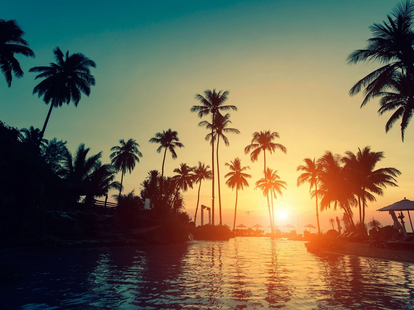 Jetsetter Guides tree palm sky outdoor water Sun Sunset palm family Ocean Sea arecales tropics woody plant dusk sunlight evening caribbean bay Lagoon plant setting shore