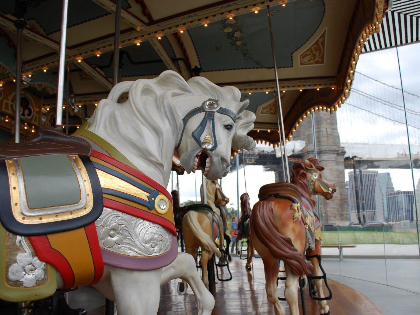 Trip Ideas amusement ride Carousel amusement park horse indoor tourist attraction horse like mammal park recreation horse harness